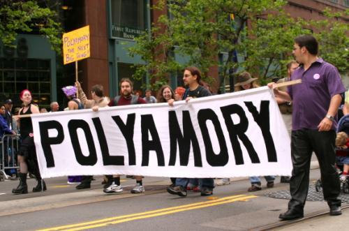 http://worldpolyamoryassociation.net/wp-content/uploads/2013/06/PolyamoryParadeBanner.jpg